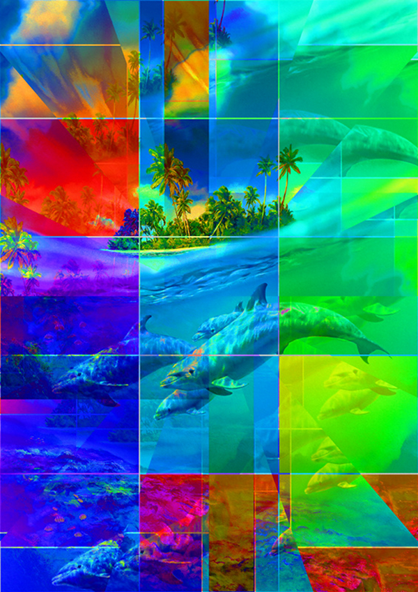 Dolphin-Poster-Download-Art-